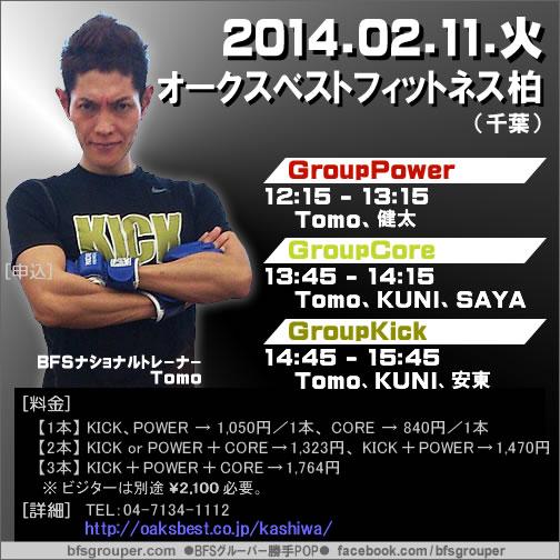 2014_pop0211kashiwa