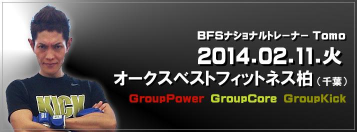 2014_pop0211kashiwa_ev
