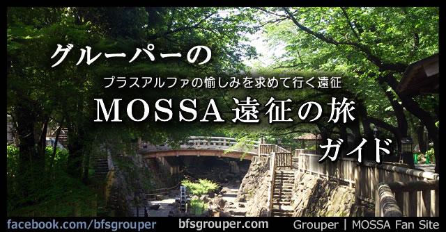 グルーパーの『MOSSA遠征の旅』ガイド