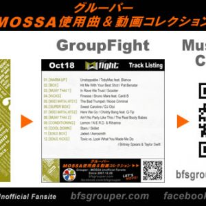 Fight / Kick 使用曲動画